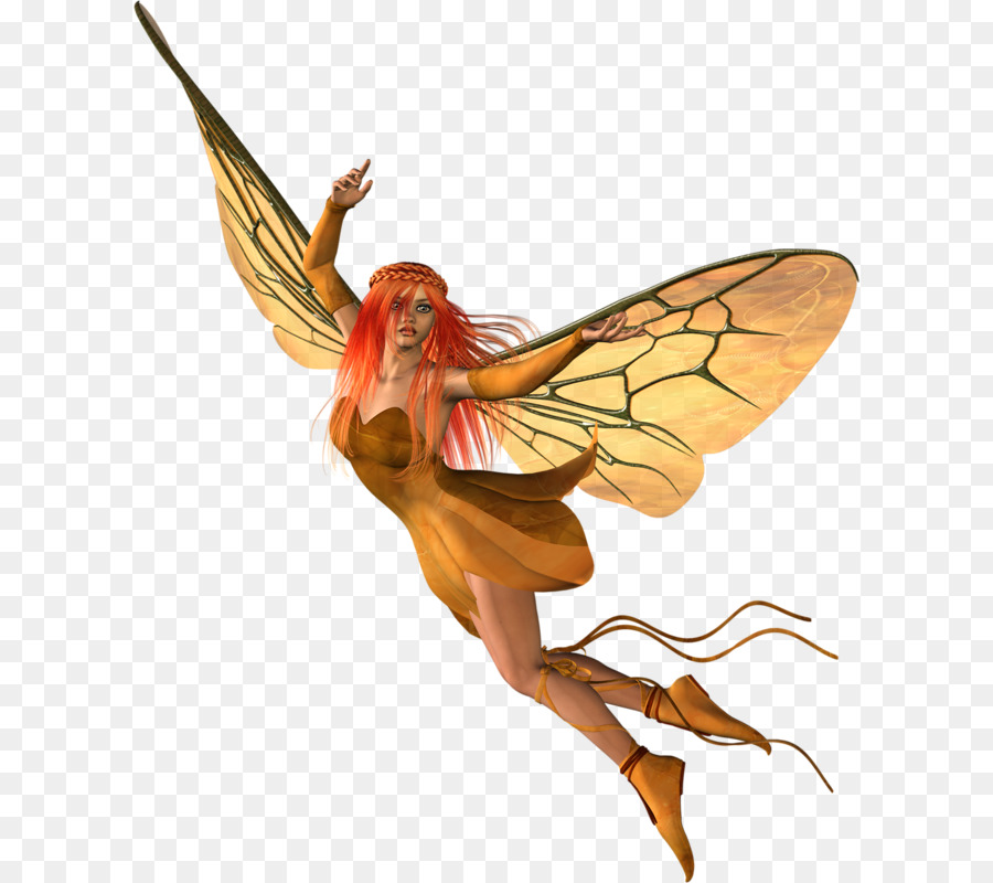 Flower Fairies png download.