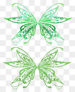 Green Fairy Wings PNG and Green Fairy Wings Transparent.