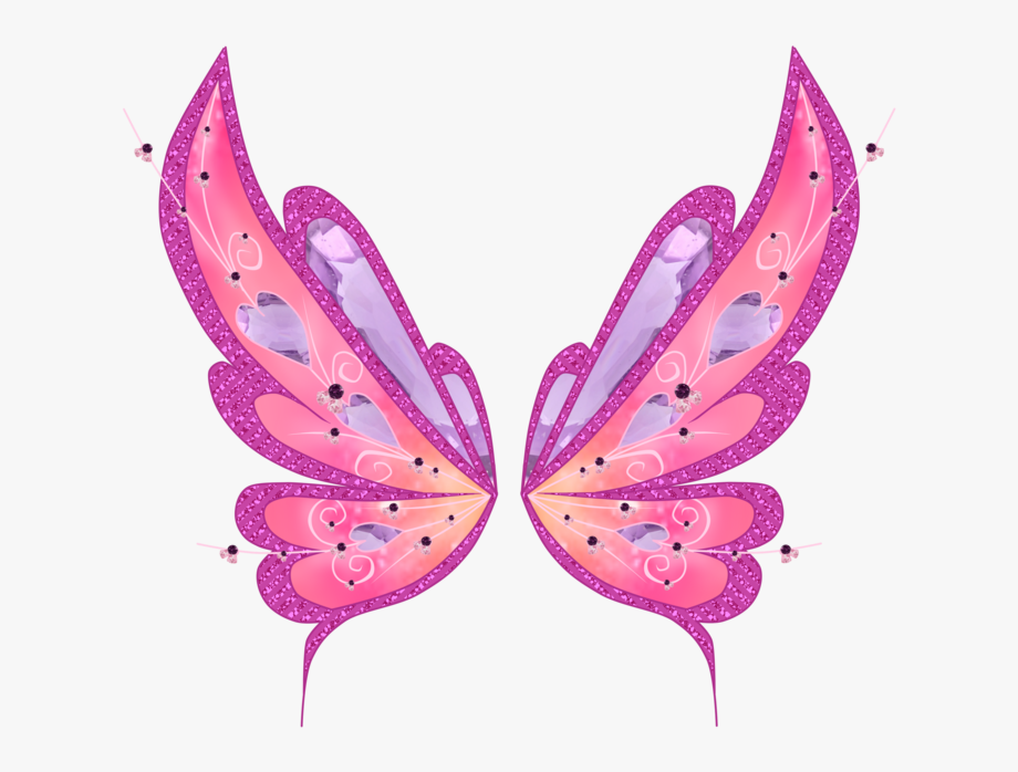 Fairy Wings Png.