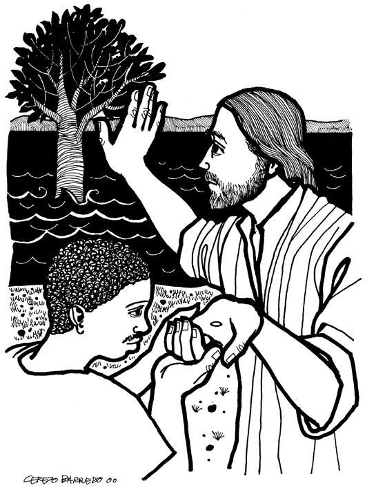 The Divine Mercy Miracles: A Mustard Seed Size Faith.