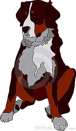 Faithful Dog Eyes Stock Illustrations.