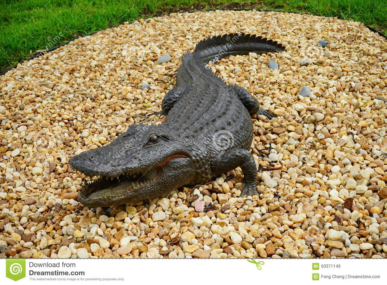 Fake Alligator Stock Photo.