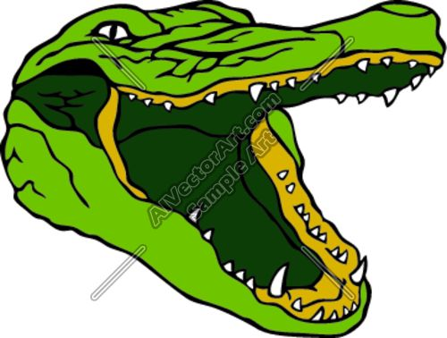 1000+ images about Alligator on Pinterest.