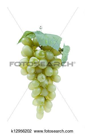 Stock Photo of Fake plastic grapes k12956202.