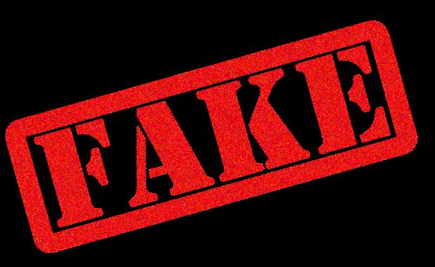 Fake PNG File.
