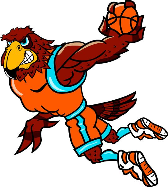 17 Best images about Falcon School Mascot on Pinterest.