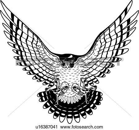Falcon Clip Art Illustrations. 3,656 falcon clipart EPS vector.