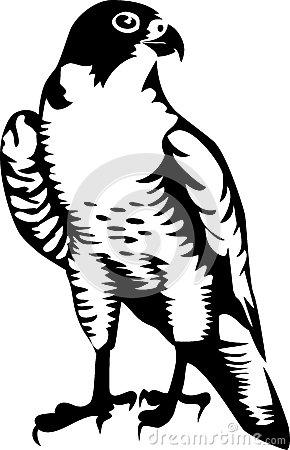 Peregrine falcon clipart.