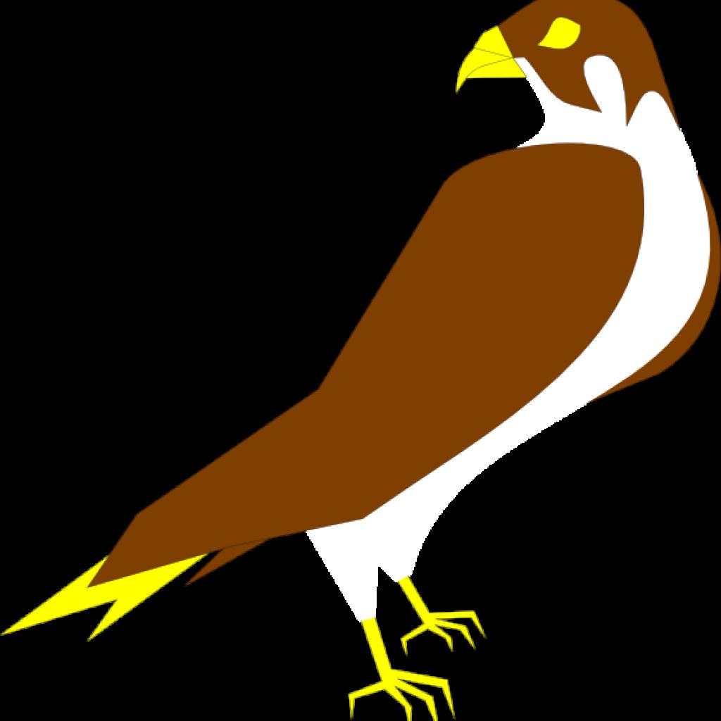 Falcon clipart falcon head, Falcon falcon head Transparent.