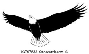 Falconry Clip Art and Illustration. 113 falconry clipart vector.