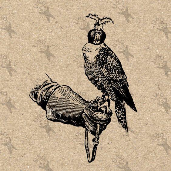 Vintage image Falcon Falconry Instant Download Digital printable.