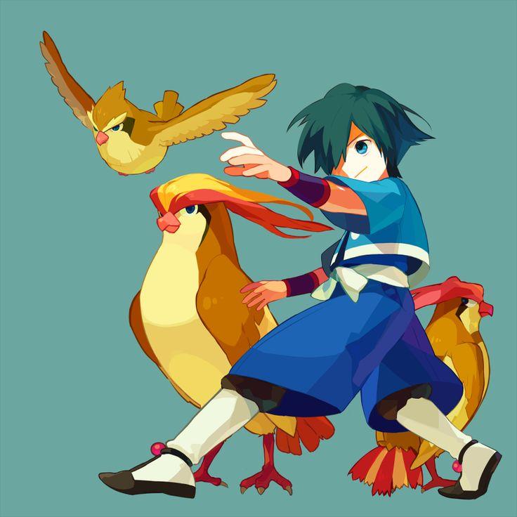 1000+ images about Falkner (Pokemon) on Pinterest.
