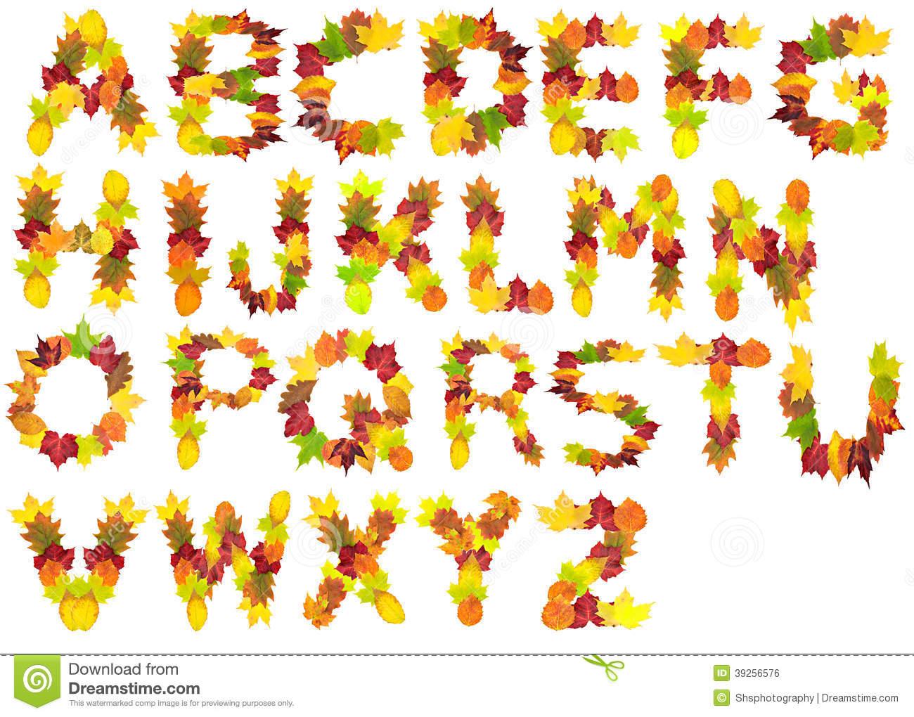 Autumn Leaf Alphabet stock photo. Image of autumn, poplar.