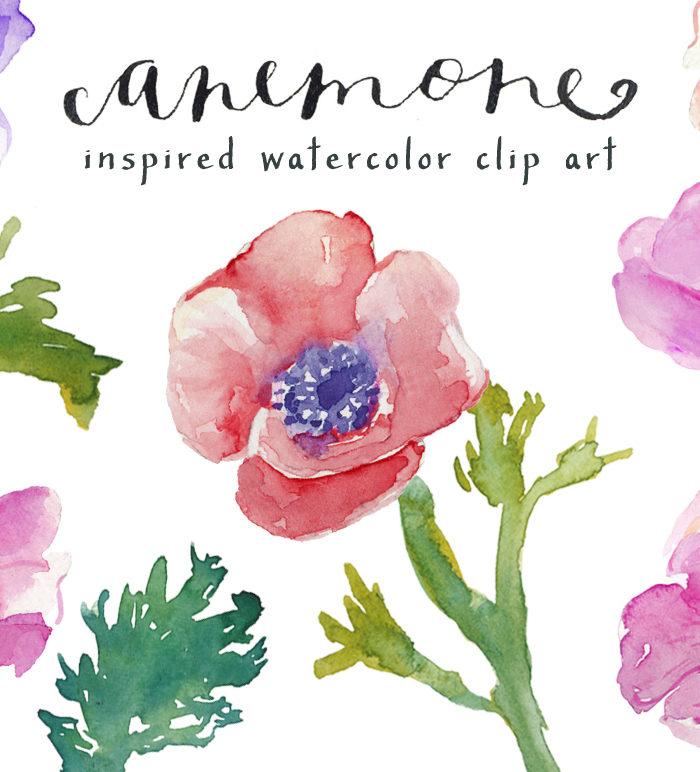 Watercolor Anemones Clip Art.
