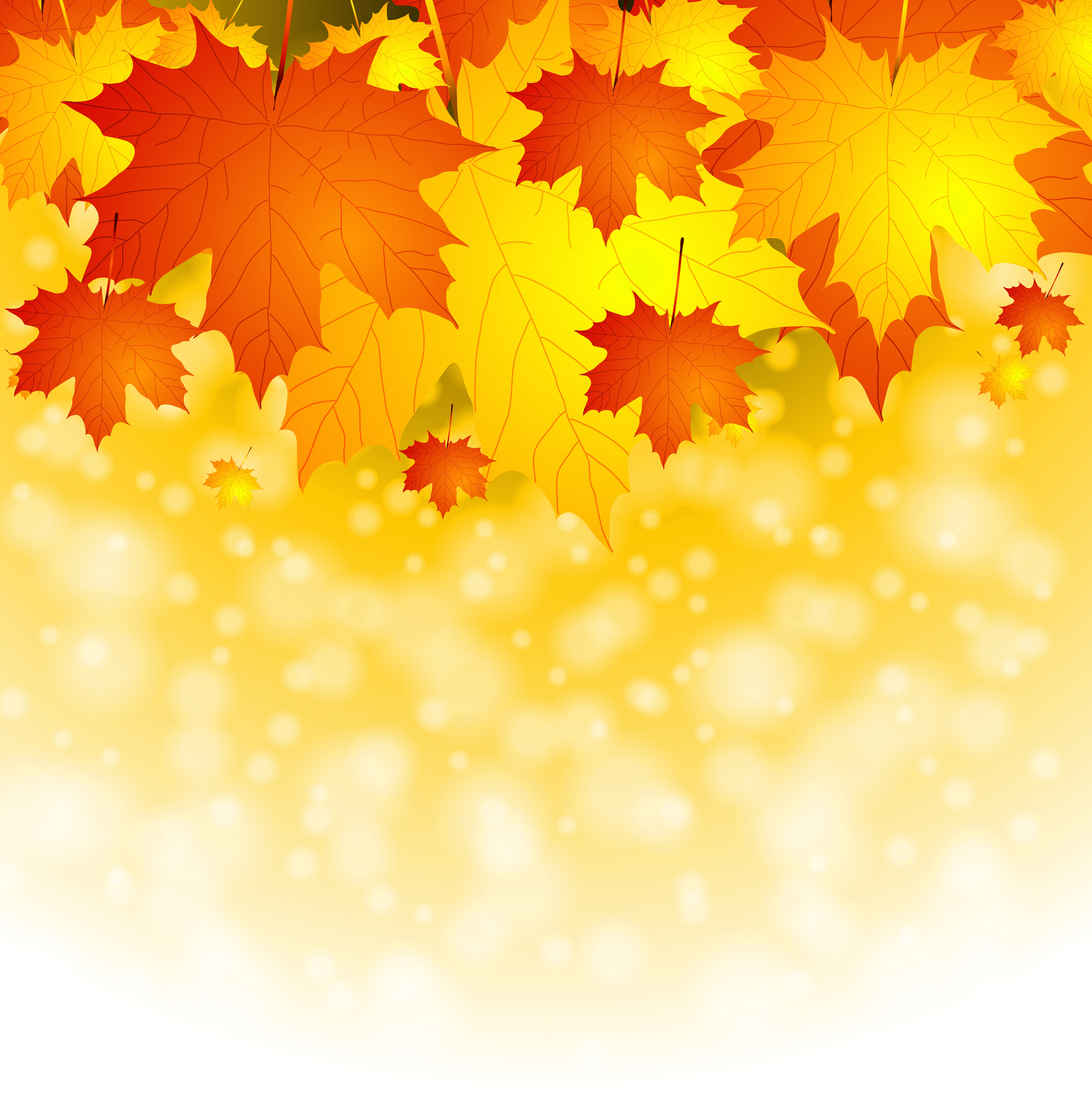 Fall leaves Background.