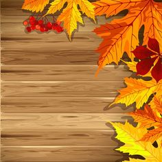 Wooden Fall Background with Fall Leaves.