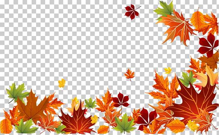 Fall Leaves Border Png (104+ images in Collection) Page 2.