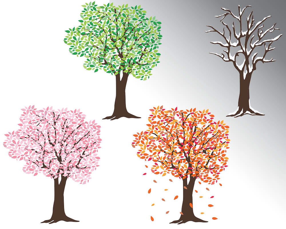 Tree Silhouette Clipart, Trees Clipart, Fall Clip Art, Cherry.