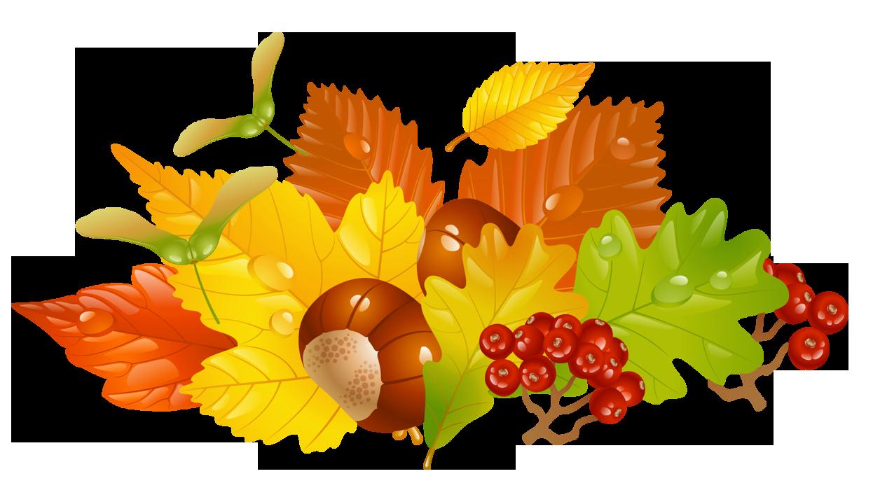 Autumn leaf color Clip art.