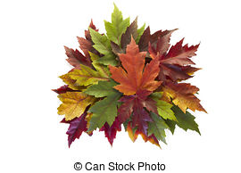Stock Images of Maple Leaves Mixed Fall Colors Heart Wreath.