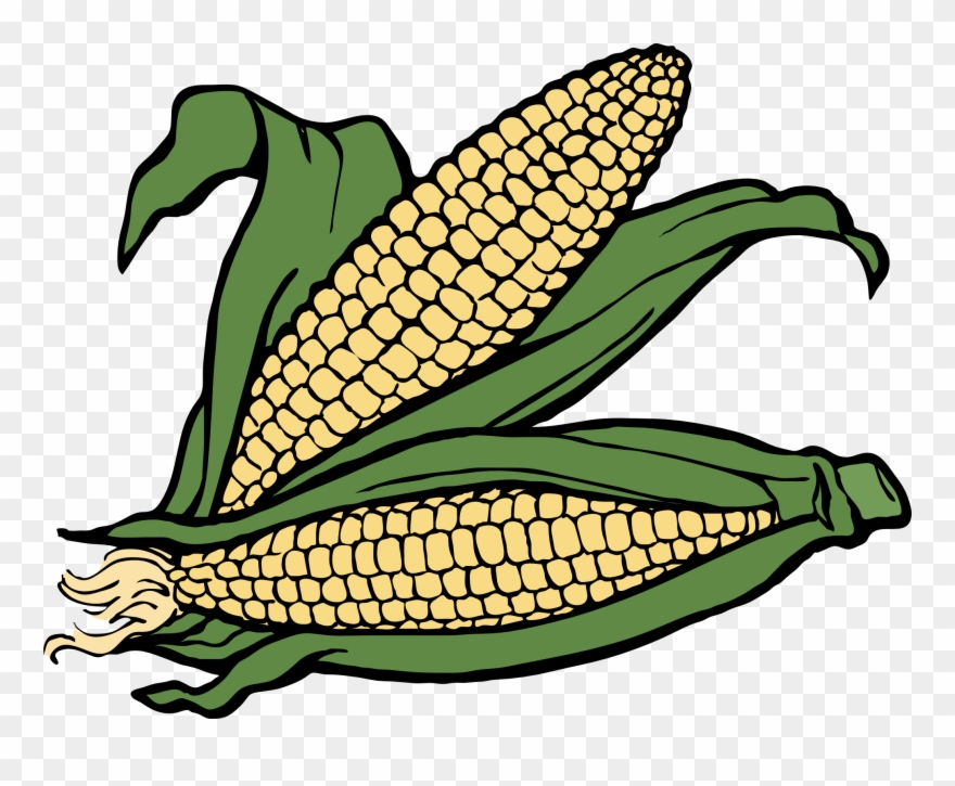 Pix For Fall Corn Clipart.