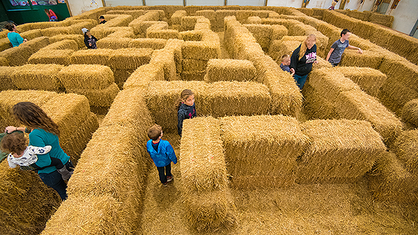 Columbus and central Ohio Pumpkin Patches, Corn Mazes, Hayrides.