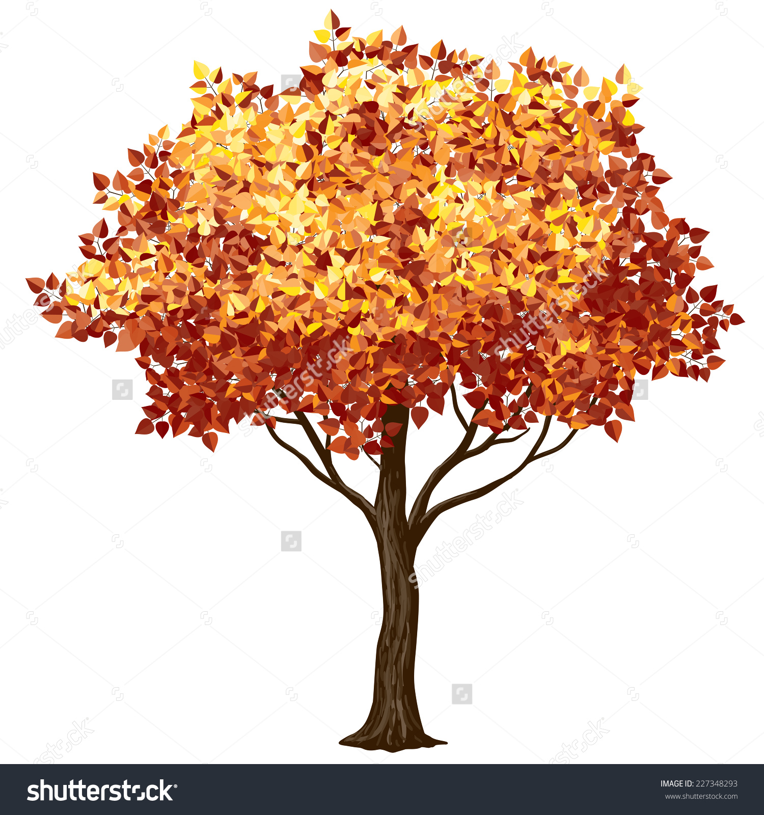 Fall Color Tree Clipart.