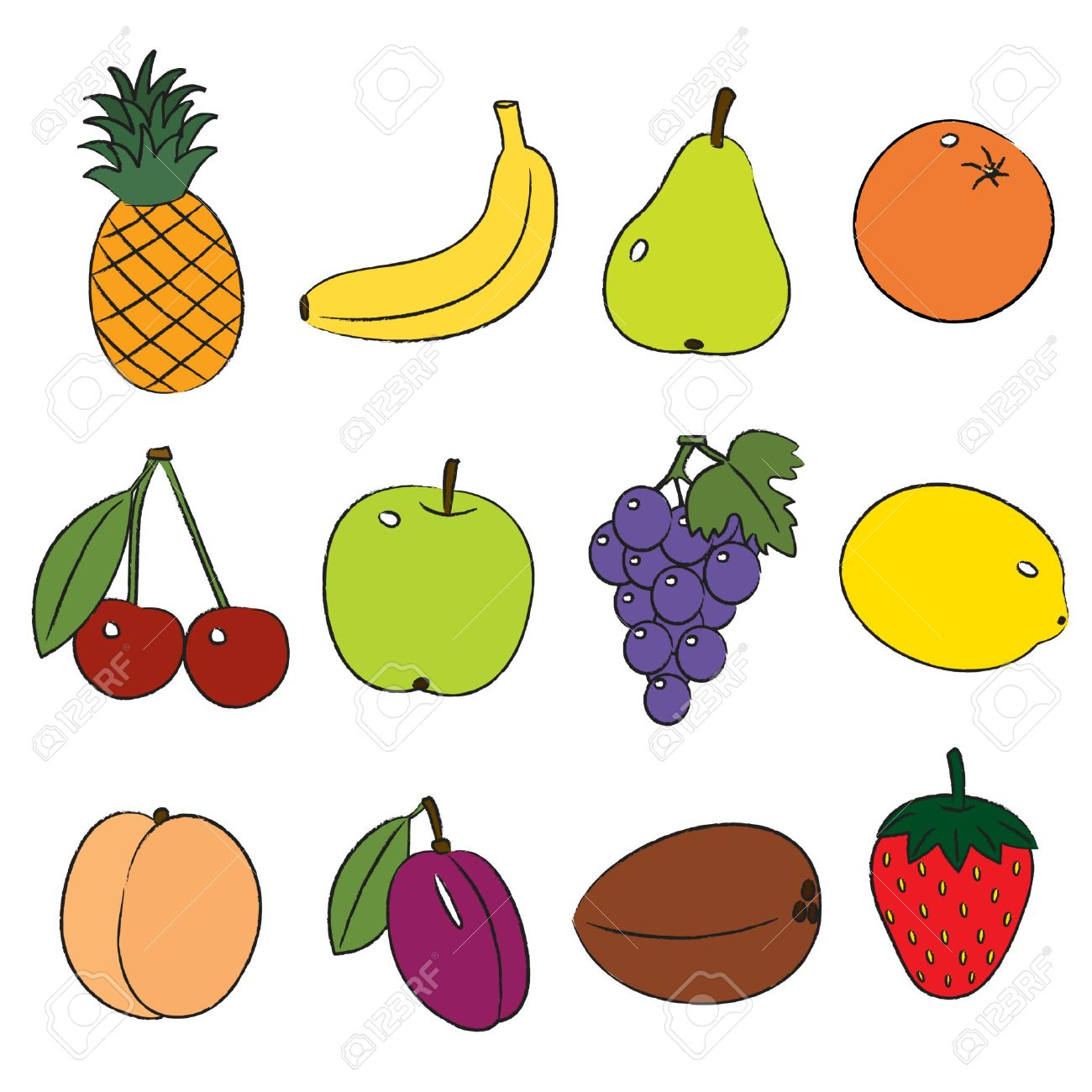 fruit varieties clipart clipground