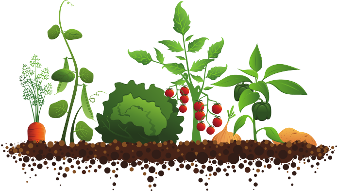 Vegetables Garden Clipart.