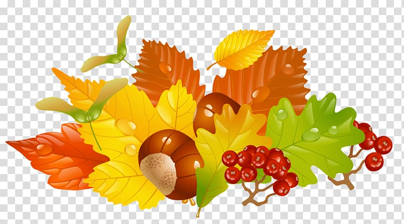 Red cherries graphics art, Autumn leaf color , Fall Leaves.