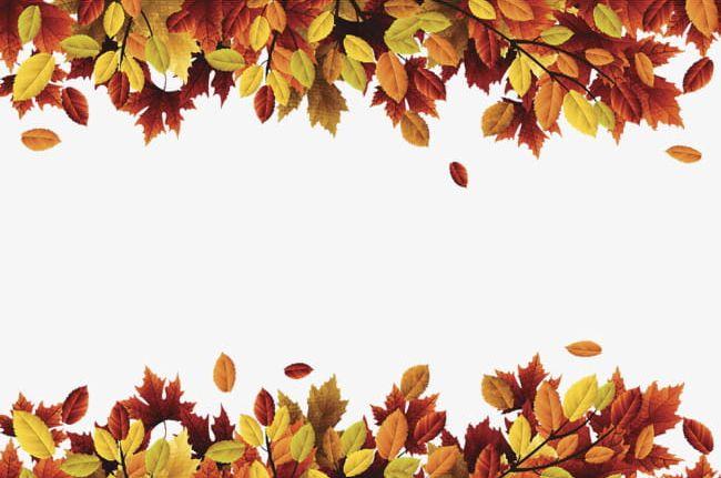 Header Footer PNG, Clipart, Album, Album Header, Autumn.