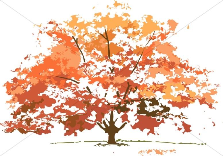 fall tree Fall colors maple tree nature clipart jpg.