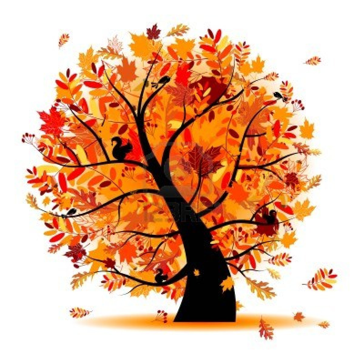 fall tree Fall from a tree clipart collection jpg.