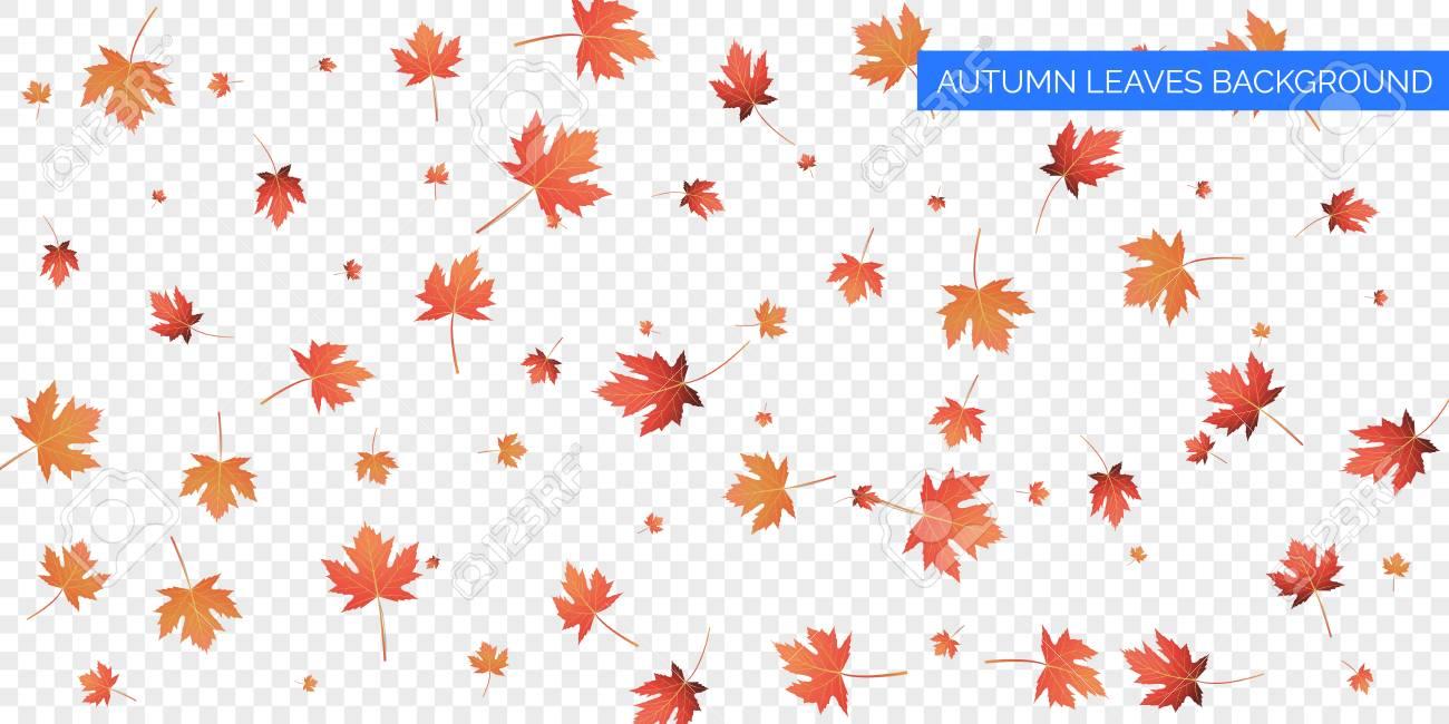 Autumn background design. Autumn falling leaves on transparent...