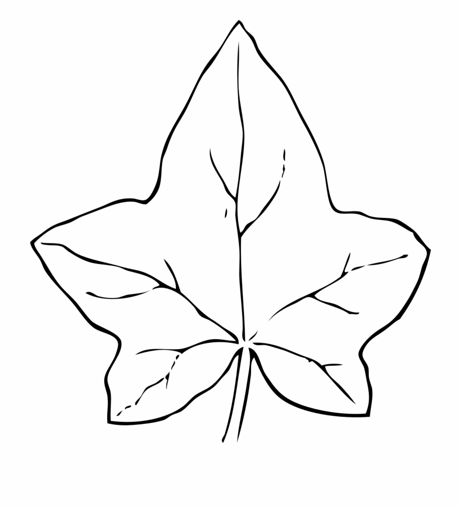 Leaves Black And White Fall Leaves Clipart Black And.
