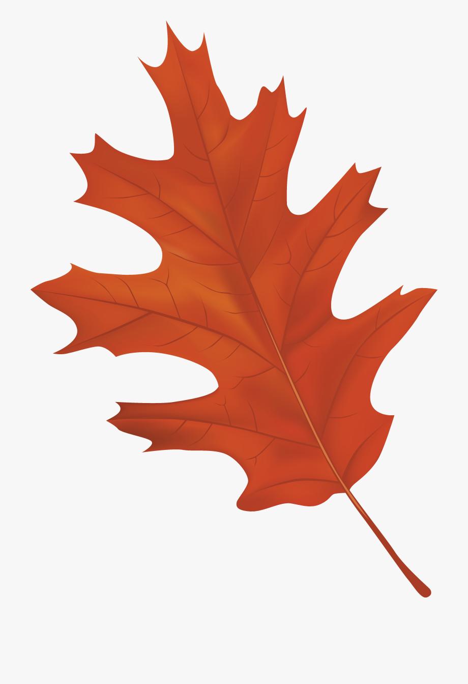 Autumn Leaf Clipart Free.