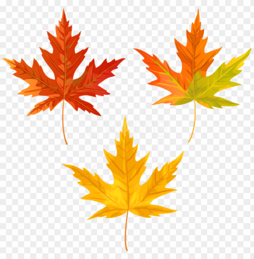 free png download orange fall leaves clipart png photo.