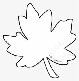 Fall Leaf PNG Images, Free Transparent Fall Leaf Download.