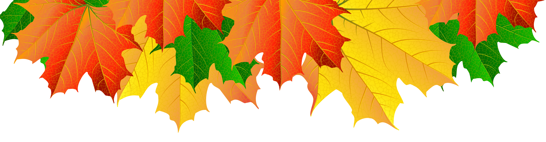 Fall Leaves Border PNG Clip Art Image.