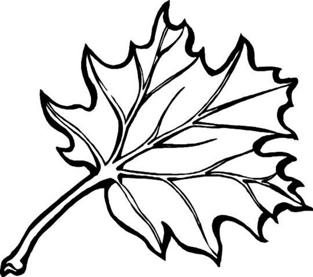 Coloring Ideas : Fall Leaves Clip Art Black And White Freele.