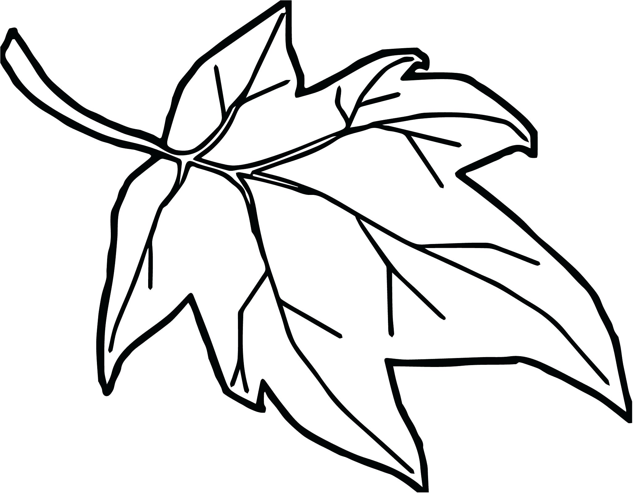 Coloring Pages : Coloring Pages Free Autumn Leaves Printable Fall.