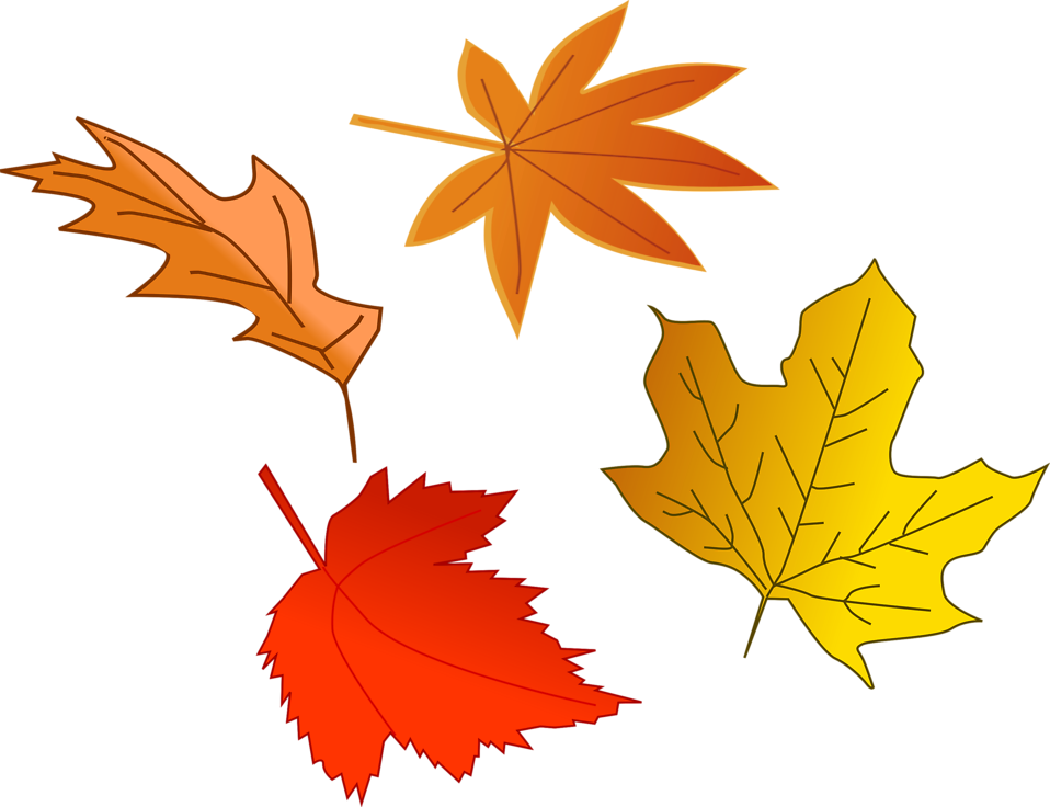 Fall leaves clipart - Clipground