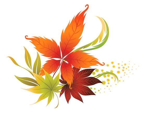 Fall leaves fall leaf clipart no background free clipart images.