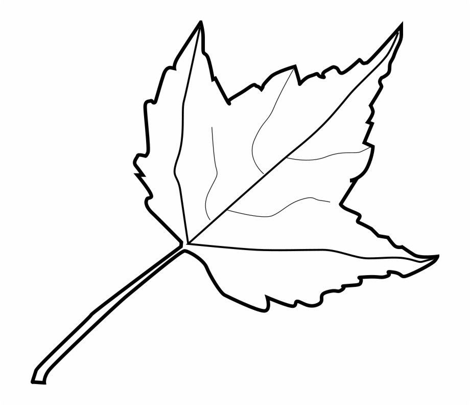 Coloring Pages Color Pages Of Leaves Coloring Page.