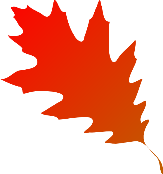 Leaves clipart vector, Leaves vector Transparent FREE for.