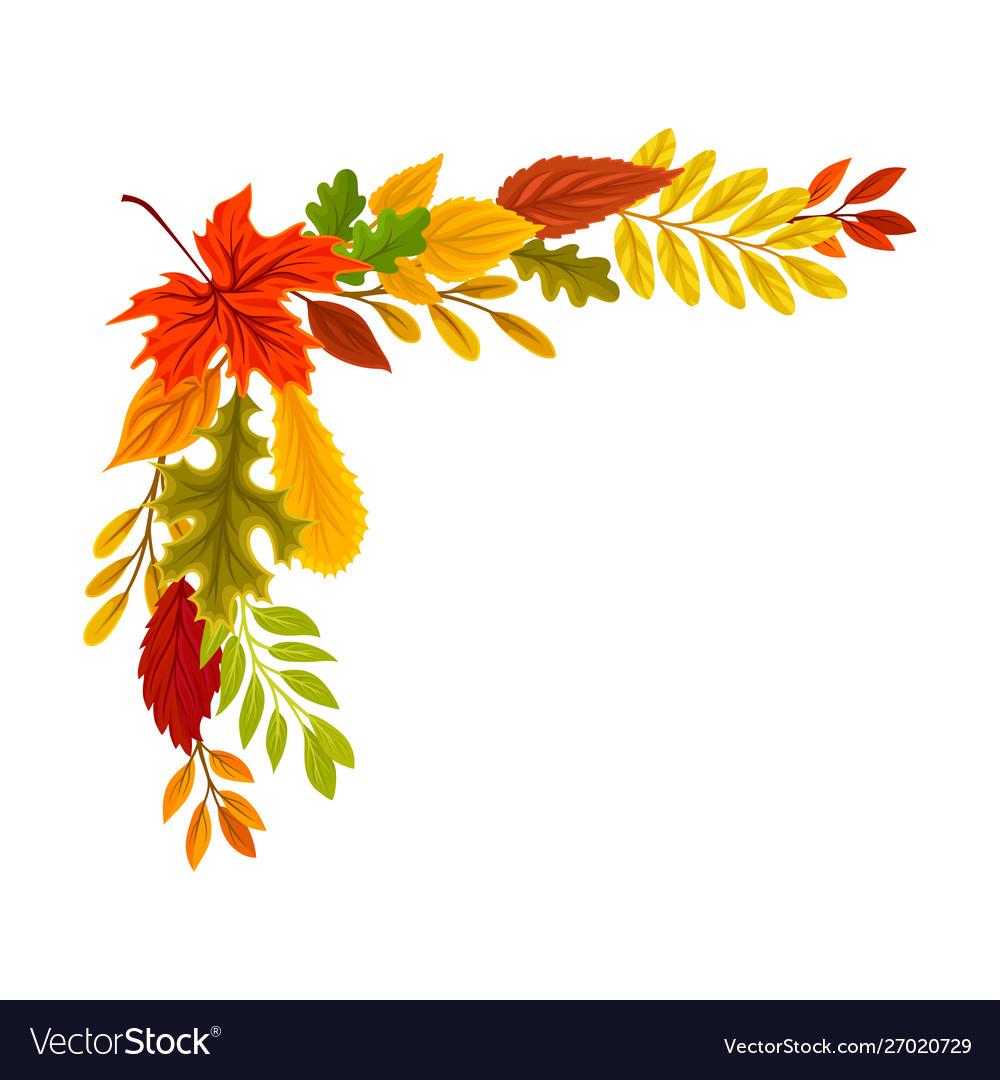 Upper left right corner autumn leaves.