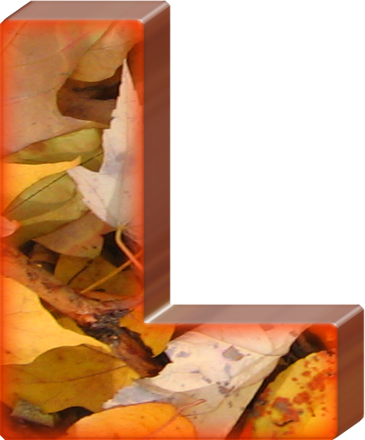 Presentation Alphabets: Fall Leaves Letter L.