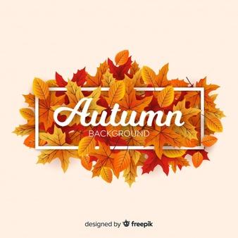 Autumn Leaf Vectors, Photos and PSD files.