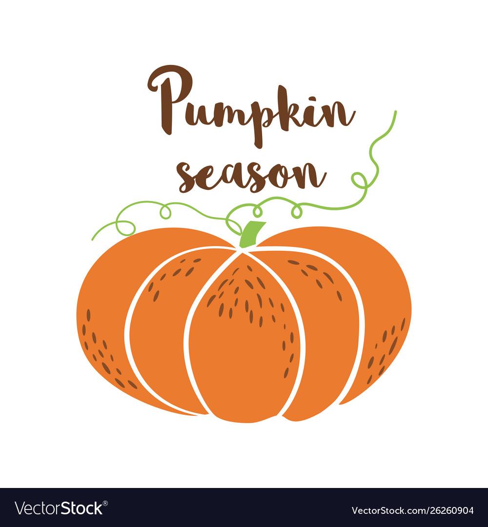 Pumpkin season logo pumpkin icon hand drawn autumn.