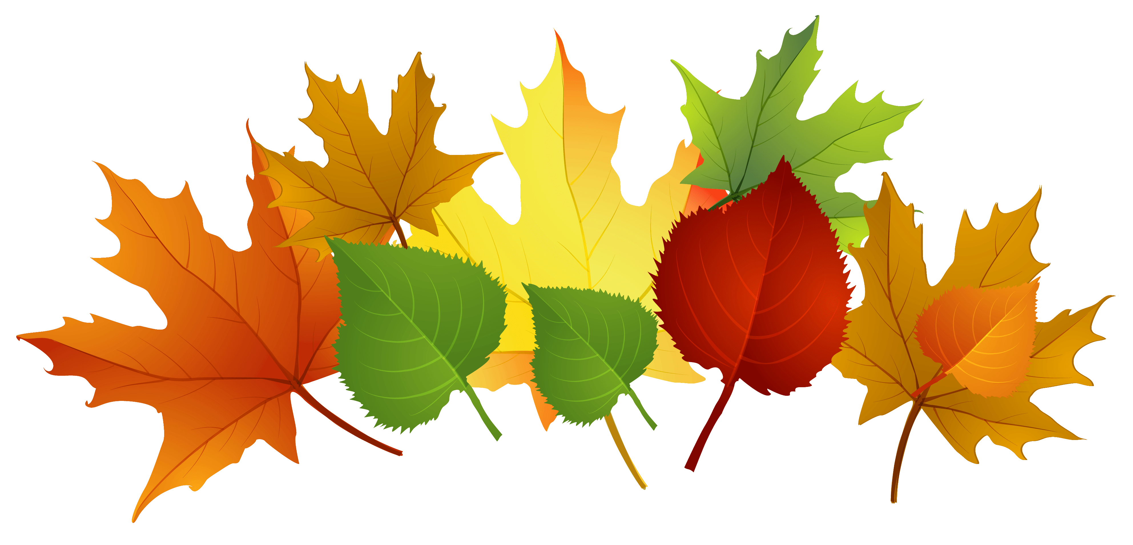 Clipart fall early fall, Clipart fall early fall Transparent.